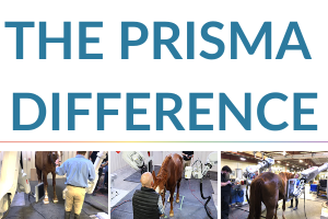 prisma-difference-news-featured-image