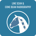 line-scan-cone-beam-radiography